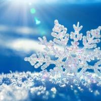 Un tenero fiocco di neve